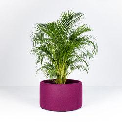 BuzziPlanter | Plant pots | BuzziSpace