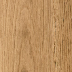 Cirro Woods - PVC-free | Dorset Oak | Synthetic panels | Amtico