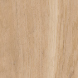 Spacia Woods - 0,55 mm | Eden Oak | Synthetic panels | Amtico