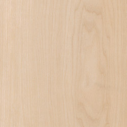 Spacia Woods - 0,55 mm | Pale Maple | Synthetic panels | Amtico