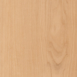 Spacia Woods - 0,55 mm | Warm Maple | Synthetic panels | Amtico