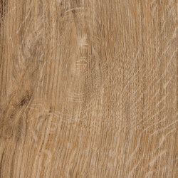 Spacia Woods - 0,55 mm | Featured Oak | Synthetic panels | Amtico