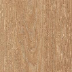 Spacia Woods - 0,55 mm | Limed Wood Natural | Lastre plastica | Amtico