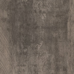Spacia Woods - 0,55 mm | Smoked Timber | Synthetic panels | Amtico