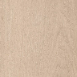 Spacia Woods - 0,55 mm | White Maple | Kunststoff Platten | Amtico