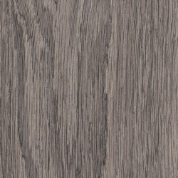 Spacia Woods - 0,55 mm | Bruges Oak | Synthetic panels | Amtico