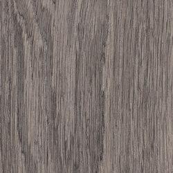 Spacia Woods - 0,55 mm | Bruges Oak | Lastre plastica | Amtico