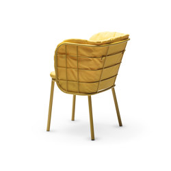 Jujube SP-B   Chairs   CHAIRS & MORE