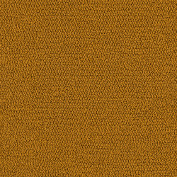 Skill x Chill 1240 | Rugs | OBJECT CARPET