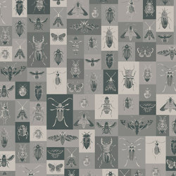 Bugs | Revestimientos de paredes / papeles pintados | WallPepper