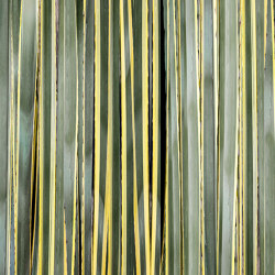 Stripes | Wall coverings / wallpapers | WallPepper