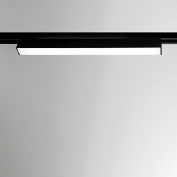 Legatus Comis 10 D. Satin Linear LED | Lighting systems | BRIGHT SPECIAL LIGHTING S.A.