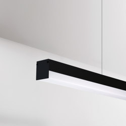 Notus 12 Linear LED | Suspensions | BRIGHT SPECIAL LIGHTING S.A.
