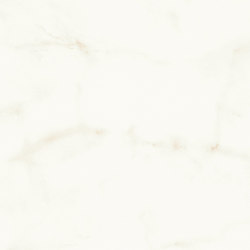 Marvel Shine Calacatta Delicato 40x80 Shiny | Ceramic tiles | Atlas Concorde