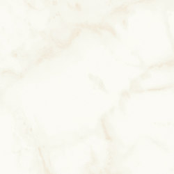 Marvel Shine Calacatta Delicato 50x120 Silk | Ceramic tiles | Atlas Concorde
