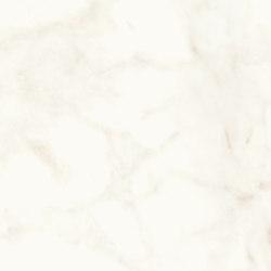 Marvel Shine Calacatta Delicato 60x120 | Baldosas de cerámica | Atlas Concorde