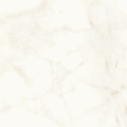 Marvel Shine Calacatta Delicato 60x120 Lapp | Ceramic tiles | Atlas Concorde