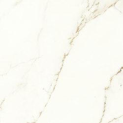 Marvel Shine Calacatta Imperiale 50x120 Silk | Ceramic tiles | Atlas Concorde