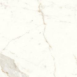 Marvel Shine Calacatta Prestigio 40x80 Shiny | Ceramic tiles | Atlas Concorde