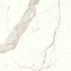 Marvel Shine Calacatta Prestigio 50x120 Silk | Ceramic tiles | Atlas Concorde