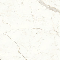 Marvel Shine Calacatta Prestigio 160x160 Lapp | Ceramic tiles | Atlas Concorde