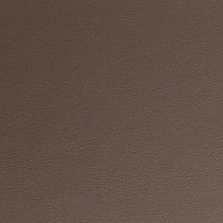 Eden | Elephant | Faux leather | Morbern Europe