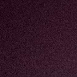 Prodigy | Aubergine | Faux leather | Morbern Europe