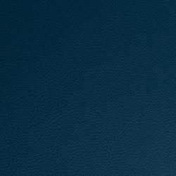 Prodigy | Legion Blue | Faux leather | Morbern Europe