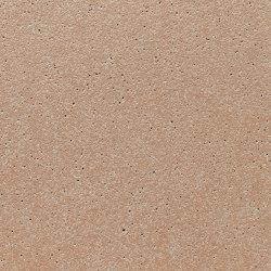 formparts | FE ferro larch | Exposed concrete | Rieder