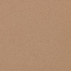 formparts | FL ferro light larch | Exposed concrete | Rieder