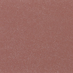 formparts   FL ferro light oxide red   Exposed concrete   Rieder