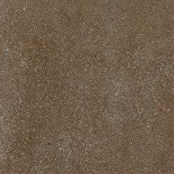 Area Pro | brique | Carrelage céramique | AGROB BUCHTAL