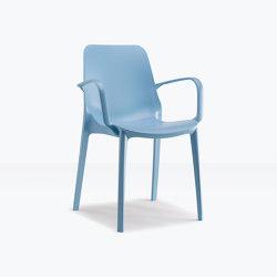 Ginevra Go Green armchair | Chairs | SCAB Design