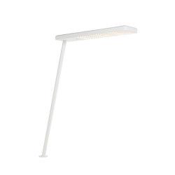 XT-A SINGLE IN WHITE/WHITE | Lámparas de sobremesa | Tobias Grau