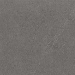 Arkistone | Silver | Piastrelle ceramica | Marca Corona