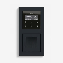 Entertainment | RDS flush-mounted radio with a speaker | Black glass appearance (including E2) | Radio systems | Gira