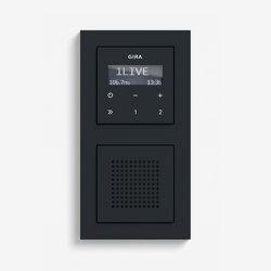 Entertainment | RDS flush-mounted radio with a speaker | Black matt (including E2) | Radio systems | Gira
