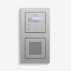 Entertainment | RDS flush-mounted radio with a speaker | Colour aluminium (including E2) | Radio systems | Gira