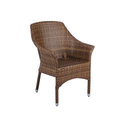 Bellini   Armchair Bellini Balou Tobacco   Chairs   MBM