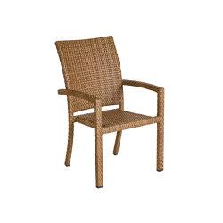 Bellini | Armchair Bellini Tobacco | Chairs | MBM