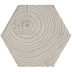 Matiere Hexa-Style Arbre Ivory | Ceramic tiles | Settecento