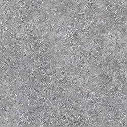 Shellstone Grey | Ceramic tiles | Settecento