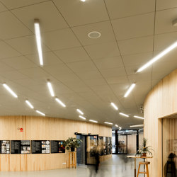 Ceiling | Building construction