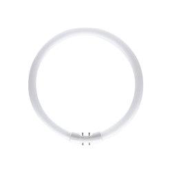 Lamp T5 Circular 22W 3000K   White Glass   Light bulbs   Astro Lighting