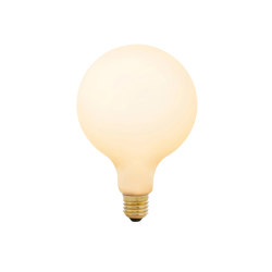 Lamp E27 Large Globe LED 6W 2700K Dimmable | Matt White | Light bulbs | Astro Lighting