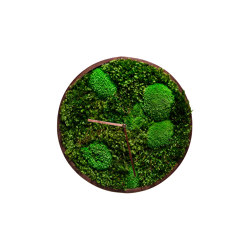 Moss Clock With Ball Moss And Provence Moss 45cm | Clocks | Ekomoss