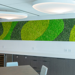 Moss Wall With Preserved Plants | Preserved Plants Walls | Sound absorbing objects | Ekomoss
