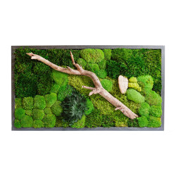 Rectangular Moss Picture | Plant Picture With Mix Moss, Preserved Plants And Wood Bark 120X60cm | Sound absorbing objects | Ekomoss