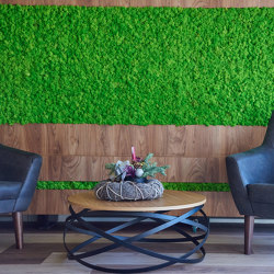 Moss Wall Reindeer | Sound absorbing objects | Ekomoss
