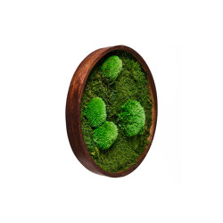 Round Moss Pictures | Moss Picture With Ball Moss And Flat Moss 50 cm | Sound absorbing objects | Ekomoss